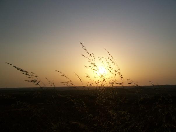 summer 2011 223