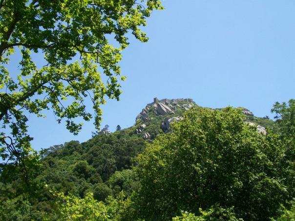 summer 2011 289