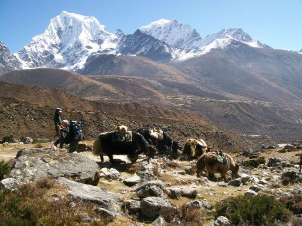 Nepal 099